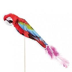 Parrot Decoration 100 pack