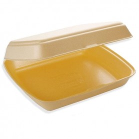 Large Square Trays with Lid