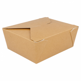 Takeaway Boxes large pack 50